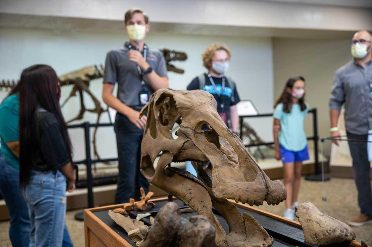 swau-dinosaur-science-museum-tours